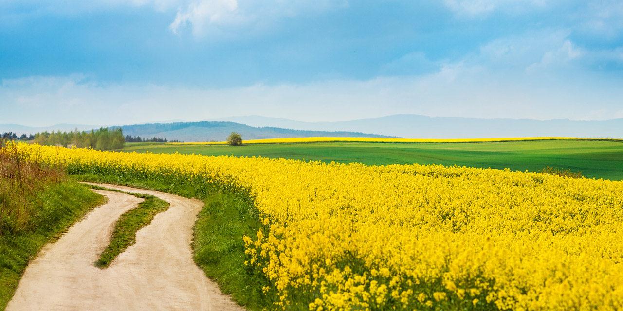 Prenamjena zemljišta, što i kako?