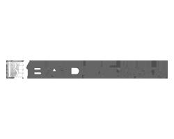 logo-01-badel