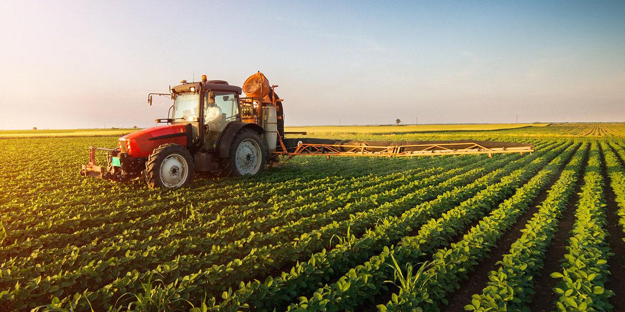 Što poljoprivrednici ne znaju kada se javljaju na natječaj za zakup državne zemlje?
